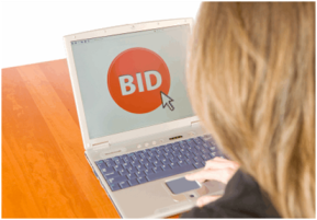 DRI Foundation Online Auction: Place Your Bids Now!