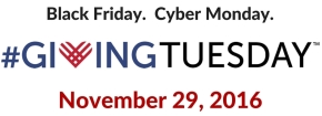Michele's Volunteer View – How You Can Be Part of Giving Tuesday