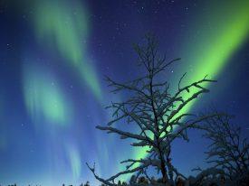 iceland-natural-wonders-nature-night-sky-atmosphere